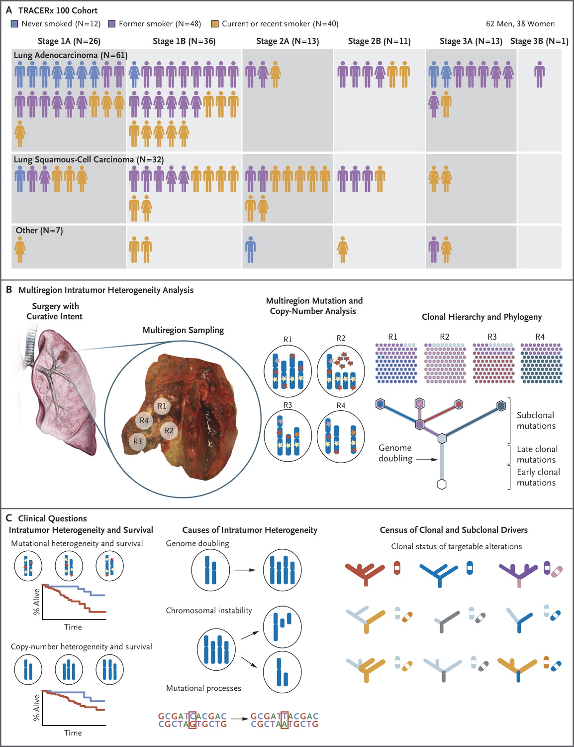 ARTICLE - Tracking the Evolution of Non–Small-Cell Lung Cancer